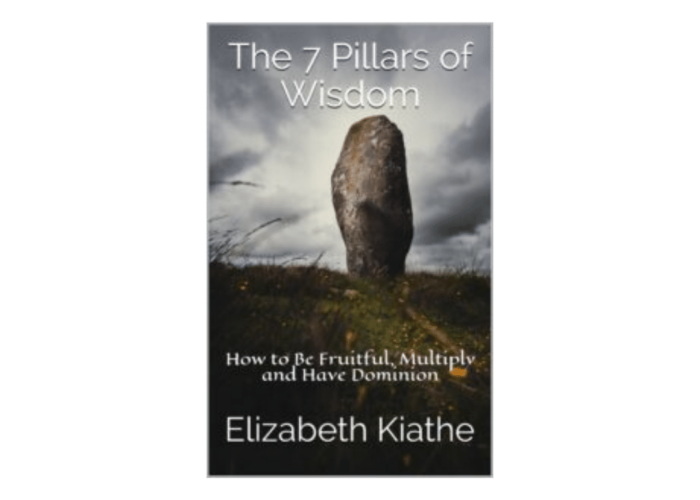 The 7 Pillars of Wisdom ACABA